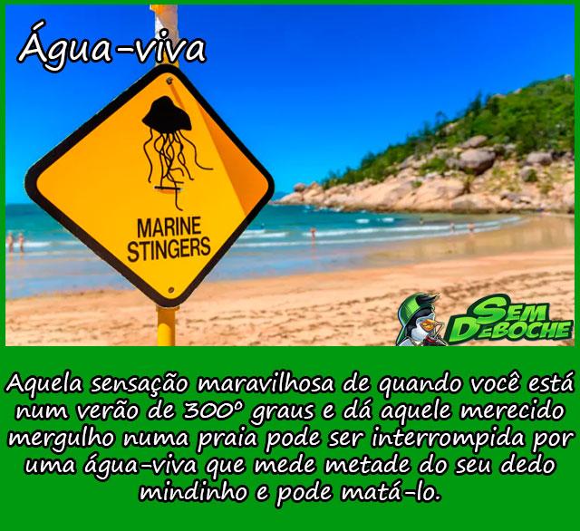 ÁGUA-VIVA