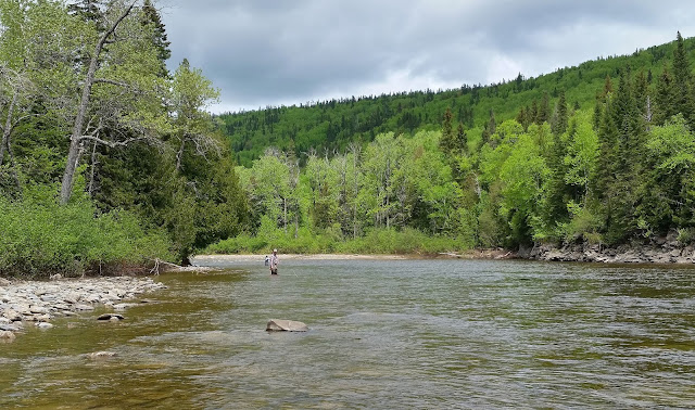 Chad and Hyun fishing Snake on the Dartmouth river, Gaspé