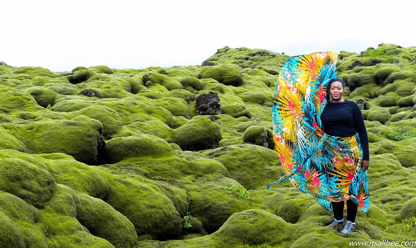 Iceland's Eldhraun Moss Lava Field