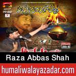http://www.humaliwalayazadar.com/2015/10/raza-abbas-shah-nohay-2016.html