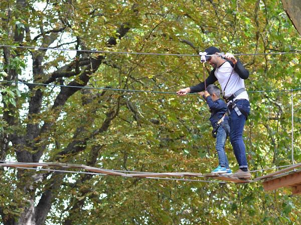 Go Ape Tree Top Junior, Battersea Park