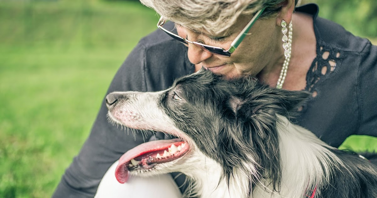 Society Of Certified Senior Advisors The Problem With Pets