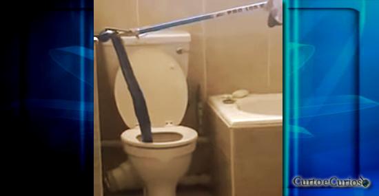 Cobra gigante aterroriza banheiros em prédio de apartamentos