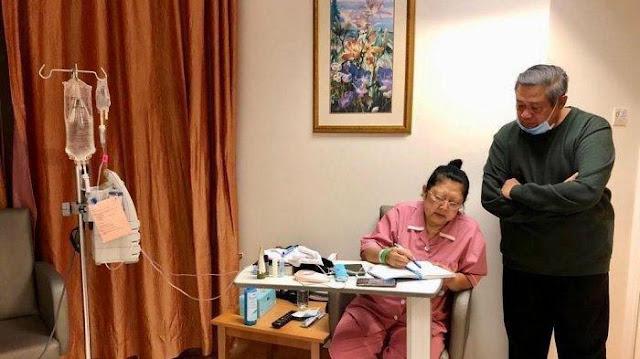 Sering Diabaikan Ini 4 Gejala Kanker Darah Seperti yang Dialami Ibu Ani Yudhoyono