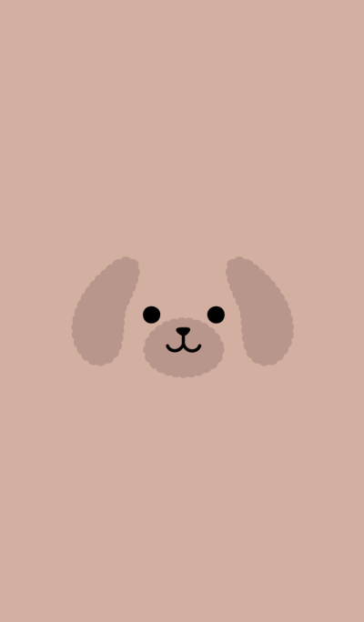 FACE (toy poodle.)
