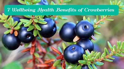 7 Wellbeing Health Benefits of Crowberries, gettitnow