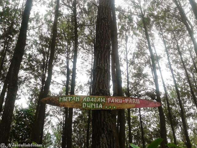 Tulisan Hutan adalah Paru-paru Dunia