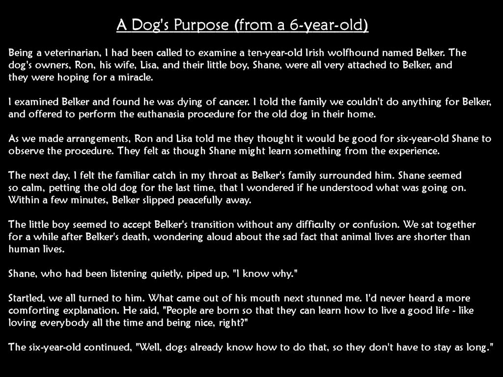 Epitaph To A Dog - Dog Eulogy Quotes