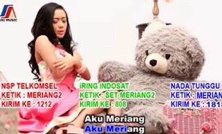 Cita Citata - Merindukan Kasih Sayang ( MERIANG ) MP3 - Dangdut Indonesia