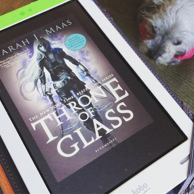Murchie lies on a brown pillow below a glass-topped table. He wears his pink and cream sweater. On the table is a white Kobo with the cover of Throne of Glass on its screen. The cover features a white girl with very long blonde hair. She wears a lot of leather and holds a jagged sword in each hand.