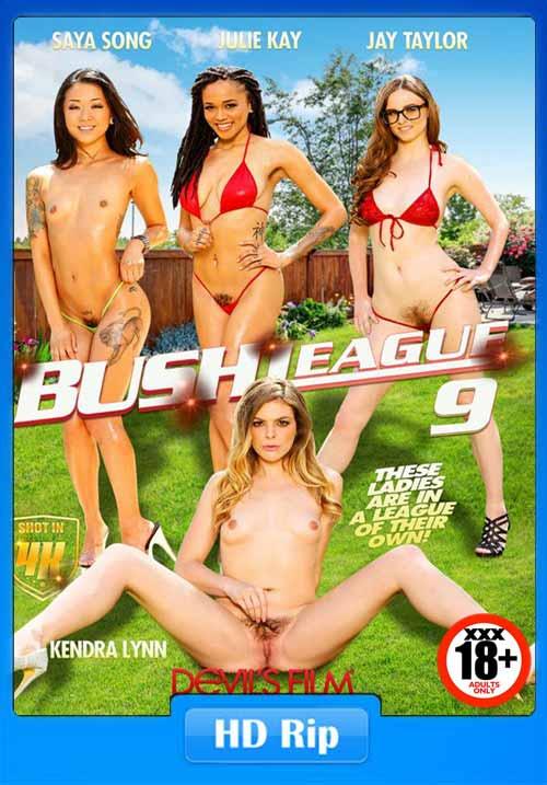 [18+] DevilsFilm Bush League 9 XXX 2017 480p HDRip 450MB x264