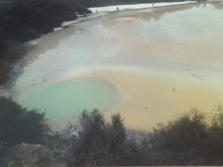 Rotorua geothermal pool green and yellow