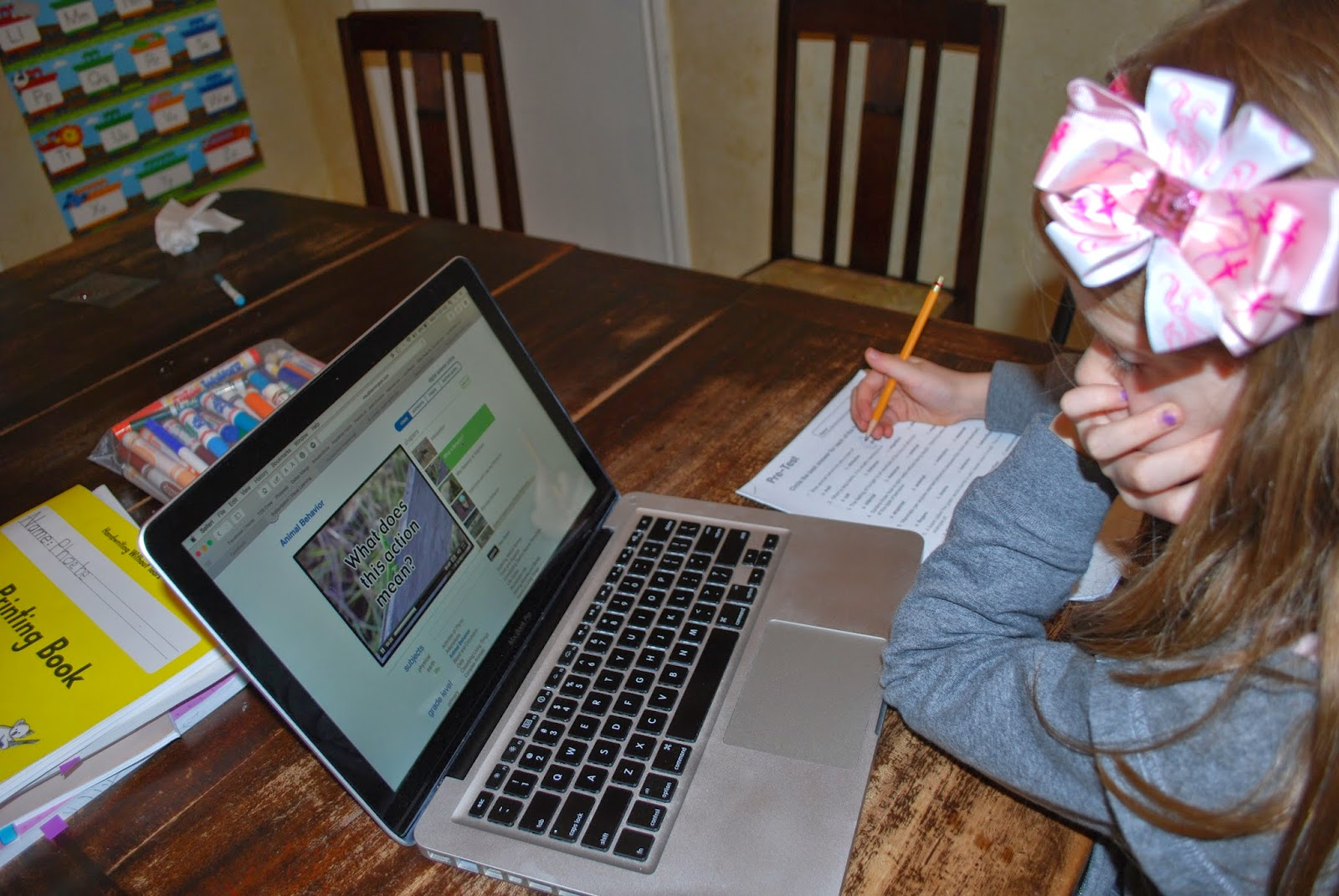 Homeschool Happenings Visual Learning Systems