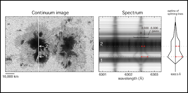 "(left) Snapshot of the sunspot with the strongest magnetic field. (middle) Spectrum taken along the white line in the left panel. ""1"" indicates the location of the strongest magnetic field. ""2"" indicates the location of the umbra. (right) Simplified diagram of the splitting of the iron absorption line. A large distance in the splitting means a strong magnetic field. ( ©NAOJ/JAXA)"