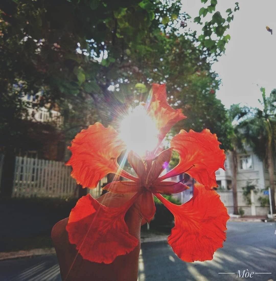 45+ Bài Thơ Chia Tay Tuổi Học Trò Cuối Cấp, Xúc Động & Bồi Hồi