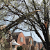 Be Careful After Storm Damage, SW Side Homeowners Advised | Southwest Chicago Post