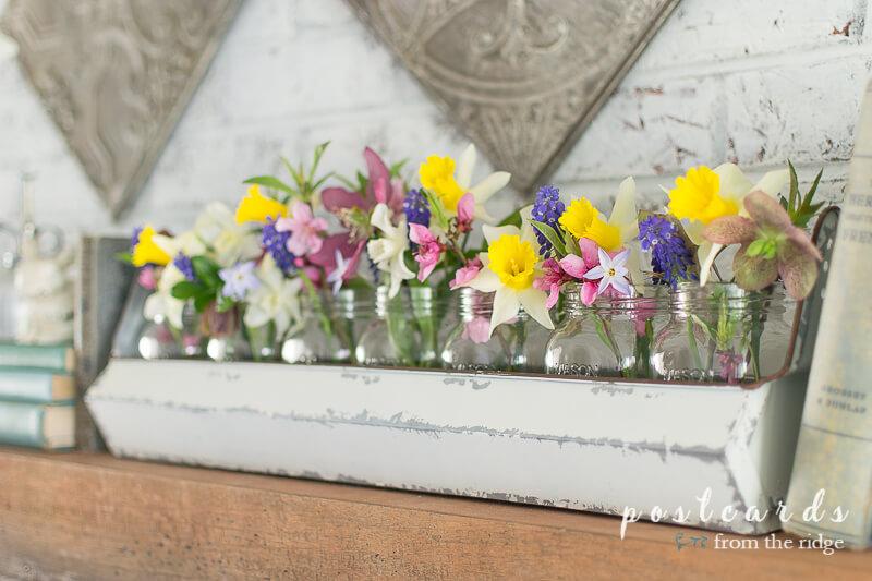 chicken feeder planter with spring flowers