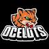 Ocelots termina temporada com a sua 1ª vitória em competições nacionais
