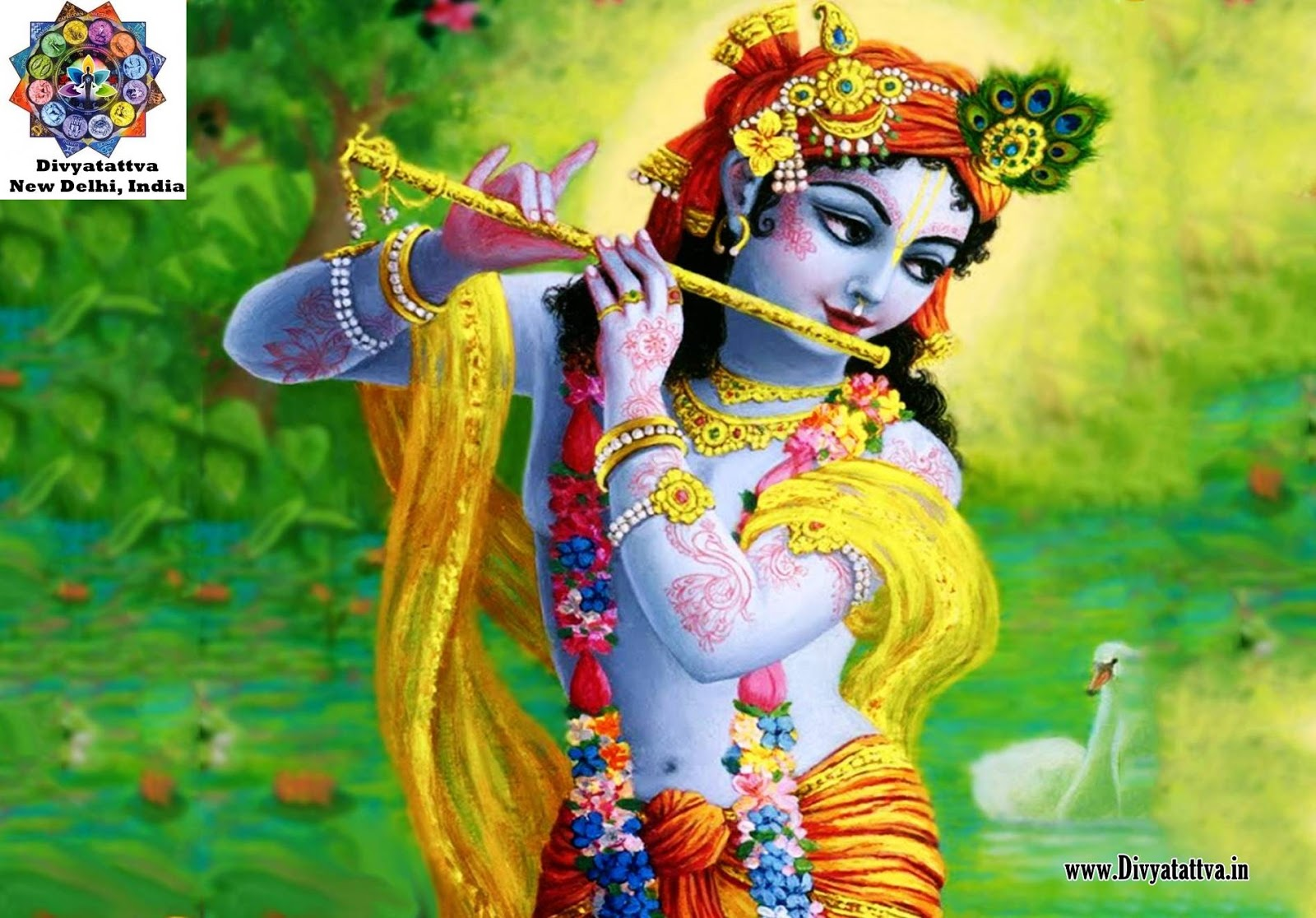 lord krishna radha hindu god spiritual hinduism govinda wallpaper backgrund images www.divyatattva.in