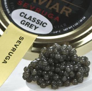 caviar sevruga berasal dari ikan sevruga sturgeon