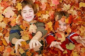 Recursos para  recibir al otoño