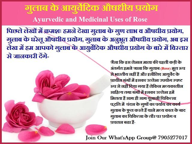 गुलाब के आयुर्वेदिक औषधीय प्रयोग