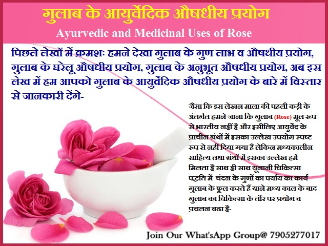 गुलाब के आयुर्वेदिक औषधीय प्रयोग-Ayurvedic and Medicinal Uses of Rose