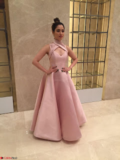 Tamannaah Bhatia looks radiant in a Mark Bumgarner gown for the Vanitha Awards 2017 ~  05.jpg