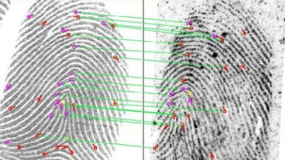 Photo of fingerprint match analysis example