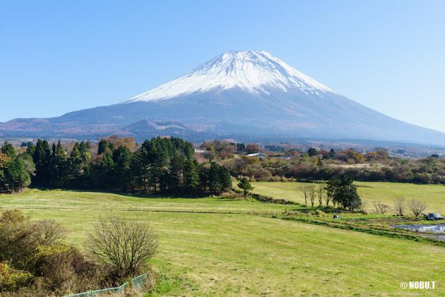 富士ヶ嶺からの富士山