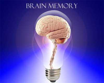 Cara Optimalkan Memori Otak