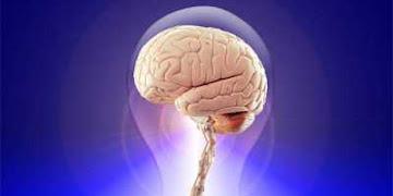 10 Cara Optimalkan Memori Otak biar Ngga Cepat Pikun