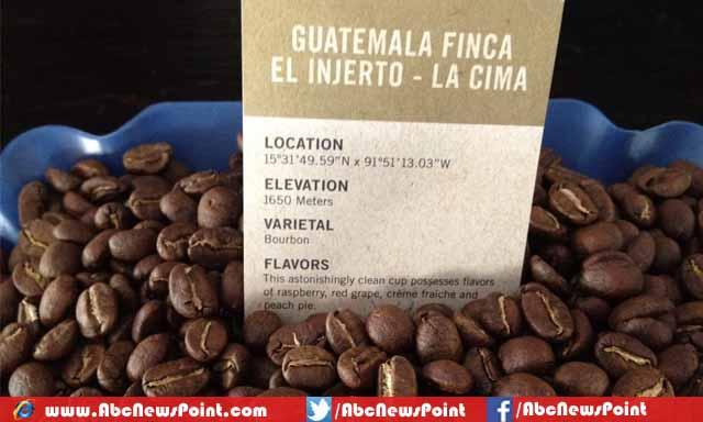 kopi El Injerto Huehuetenango panama kopi dengan harga paling mahal di dunia