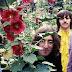 Ouça versão inédita e acústica dos Beatles para 'While My Guitar Gently Weeps'