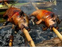 Terungkap Sudah! Jika Haram, Untuk Apa Babi Diciptakan? Begini Penjelasannya