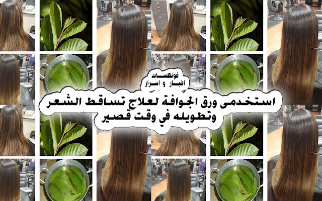 Use guava paper to treat hair loss and stretch it in a short time