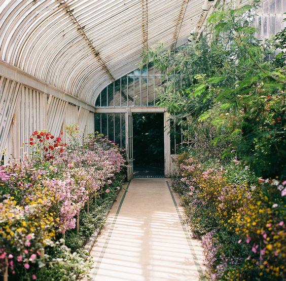 Giardino Orticoltura Firenze: Bohemismo