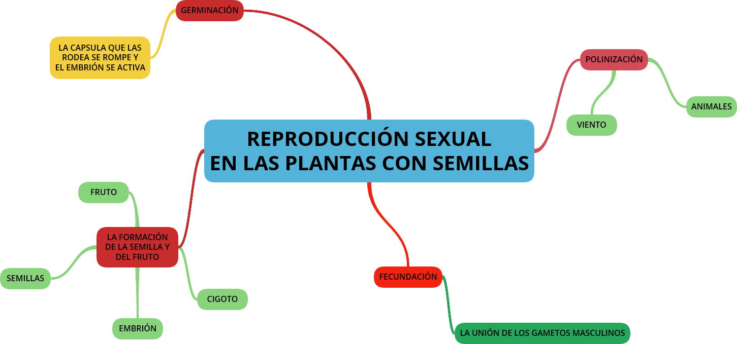 Reproduccion sexual de las plantas mapa conceptual
