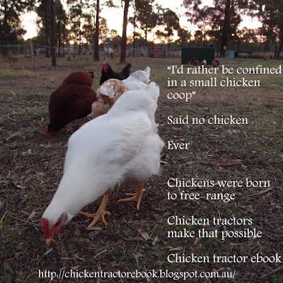 eight acres: chicken tractor ebook