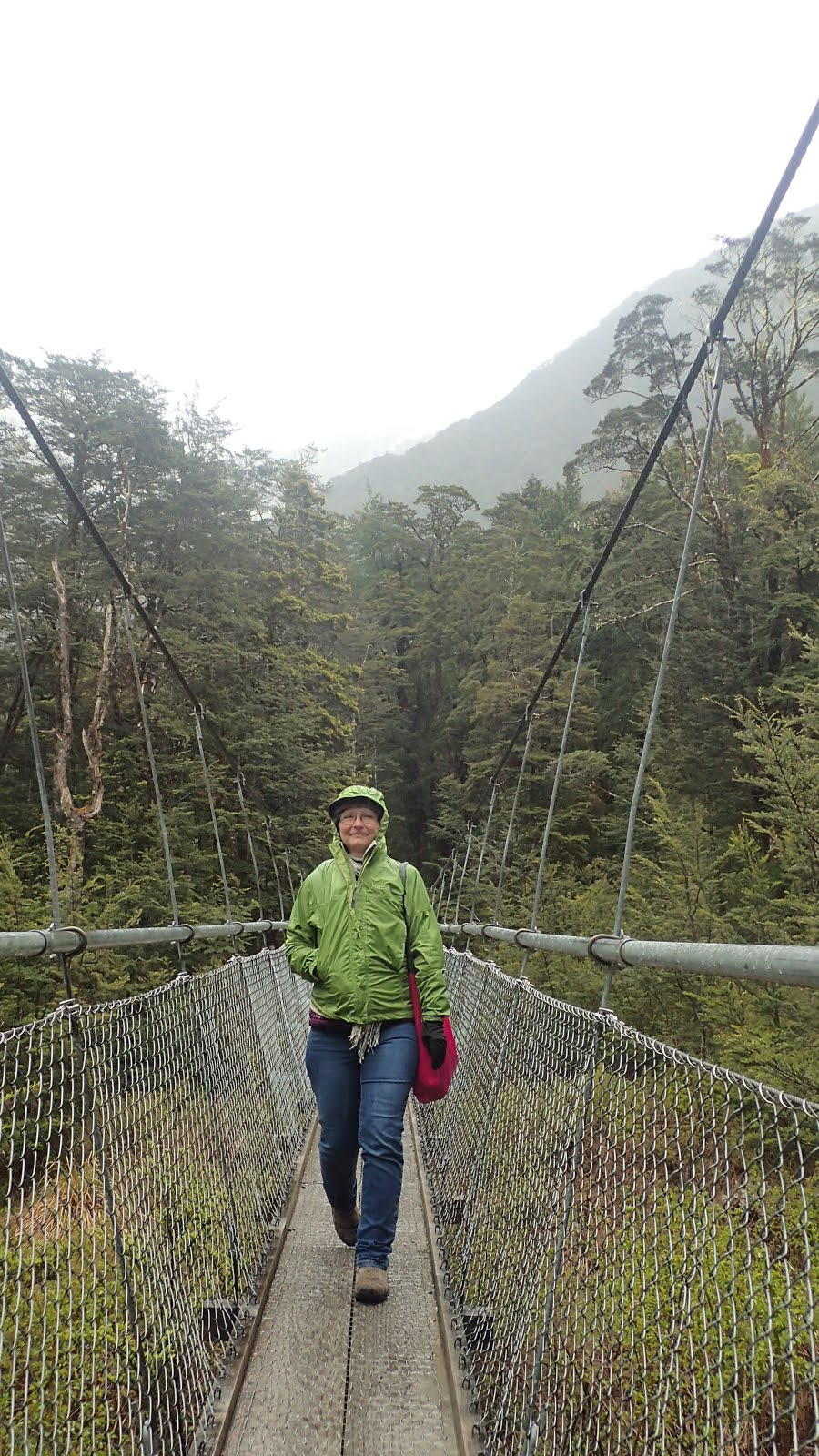 Swing bridge on the Routeburn