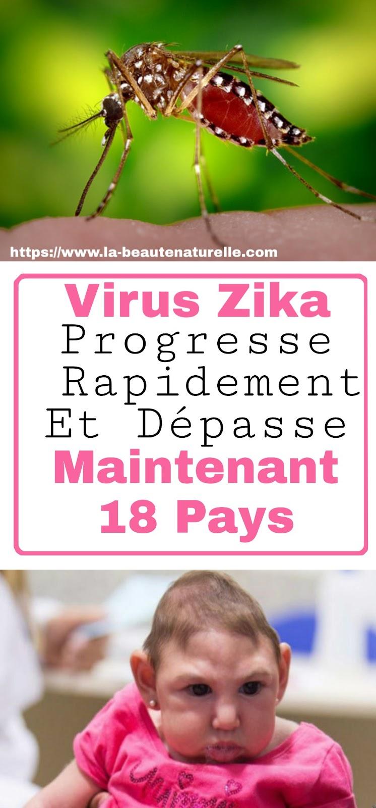 Virus Zika Progresse Rapidement Et Dépasse Maintenant 18 Pays