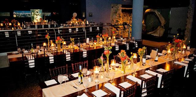 Wedding Venues In Raleigh Nc north carolina aquarium at fort fisher