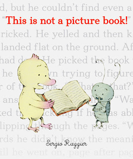 https://www.goodreads.com/book/show/26031158-this-is-not-a-picture-book
