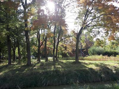 Herfst in Beijum