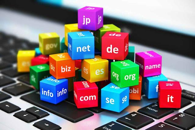 domain .com .net .org .info .id