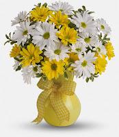 bloomex-yellow-white-daisy