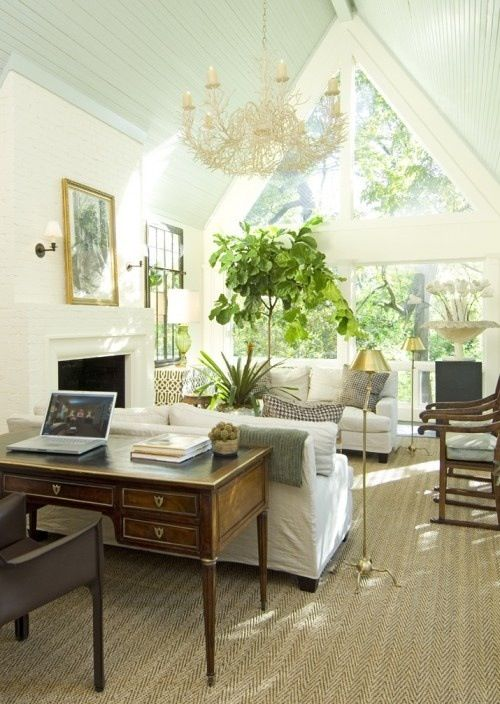 gorgeous white living room with big plants and window