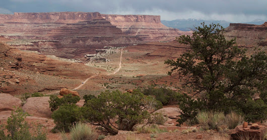 Canyonlands National Park: The White Rim Redux