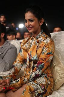 Actress Rakul Preet Singh Stills in Short Dress at Dhruva Pre Release Function  0115.JPG