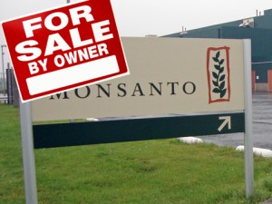 Monsanto Insiders Dump Stock as the Truth about GMOs Spreads across Wall Street - Monsanto for Sale by Owner